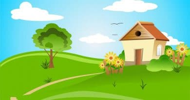 Make Your House Green by Junk Removal Service - Free Thoughts Portal