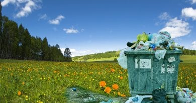 Recycling Waste by Junk Removal Company - Free Thoughts Portal