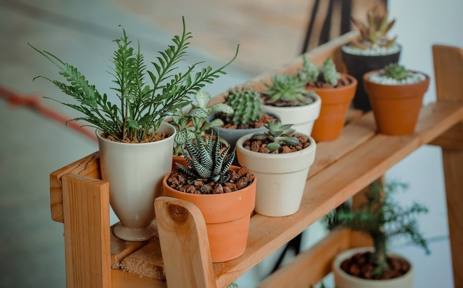 Using Your Garage to Help You Garden - Freethoughtsportal -3